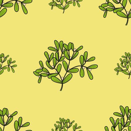 twigs: Seamless pattern with mistletoe twigs. Vector doodle illustration