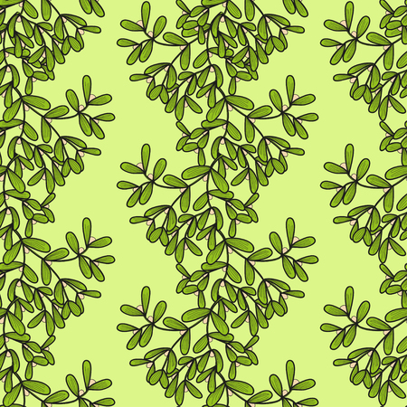 twigs: Seamless pattern with vertical mistletoe twigs. Vector doodle illustration