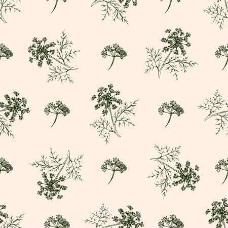 Seamless pattern with drawing vintage dill or fennel. Vector flower dill background. Herb food ingredients, green organic spice, healthy vegan food