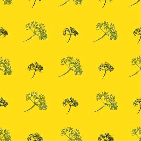 fennel: Seamless pattern with drawing vintage dill or fennel. Vector flower dill background. Herb food ingredients, green organic spice, healthy vegan food