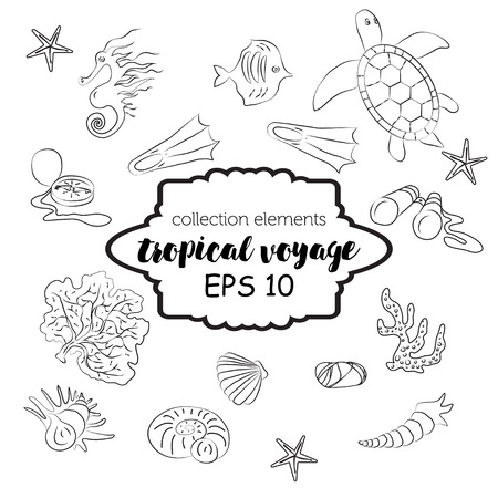 polyps: Collection with marine and tourism outline elements-water turtle, jellyfish, fish, corals, binoculars, seahorse, flippers and seashell. Vector sea fauna design. Adventure tropical concept