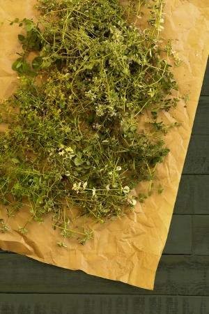 Varieties of thyme herb prepared for drying on brown paper and rustic green table  photo