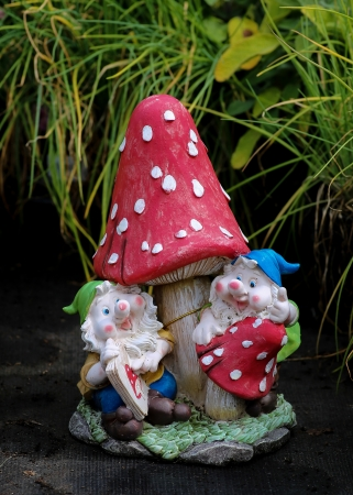 Two garden gnomes learning the red mushroom