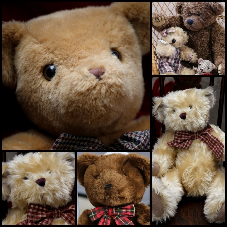 Cute teddy bears with ribbons set collage collection black frame