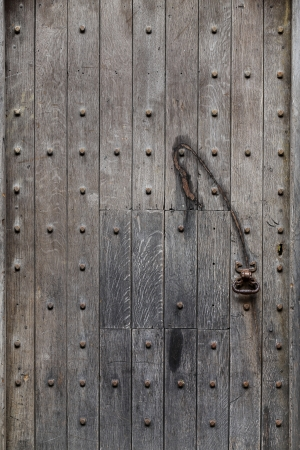 Old door detail with rusty iron, background photo