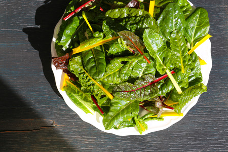 Rainbow swiss chard fresh washed leaves on white plate dark background