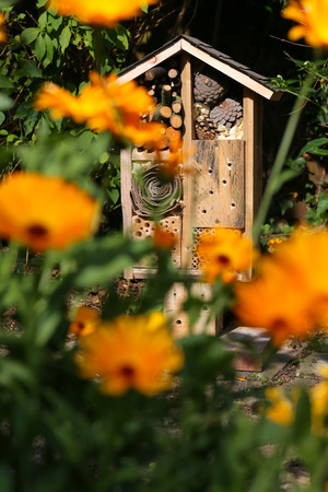 Wooden insect house decorative bug hotel, ladybird and bee home for butterfly hibernation and ecological gardening