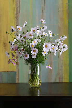 Bunch of white and pink garden cosmos flowers bouquet in vase on dark background Stock Photo