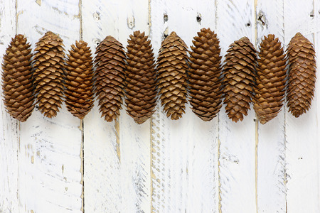 White painted wooden background with natural brown pine cones in line Stock Photo