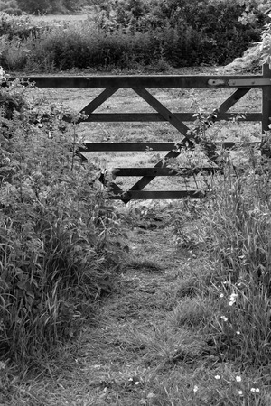 Public footpath with gate leading onto meadow, England