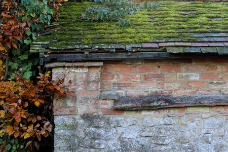 Old roof tiles covered with moss and leaves on old brick and stone wall, autumn leaves on a side Stock Photo
