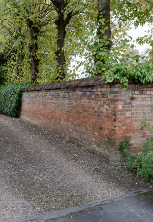 Creeping ivy on the brick wall fence with gravel driveway, tall trees plant on brick wall in garden Stock Photo