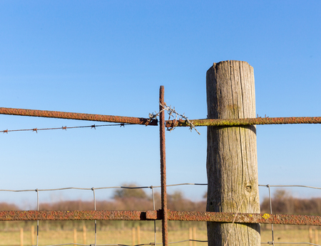 trespass: Rusty barbed wire old rough rusted metal posts security fence