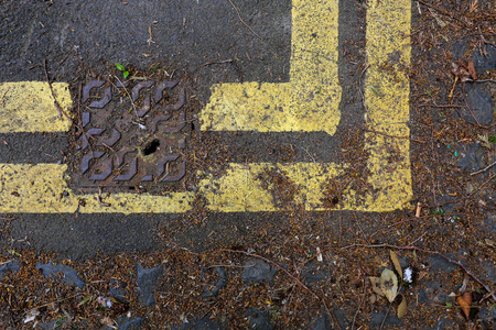 Sewer cover on road with double yellow lines full of leaf debris background