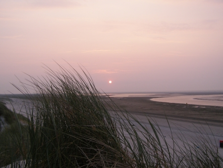 roze: Sunset