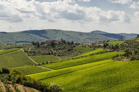mediterranean landscape chianti