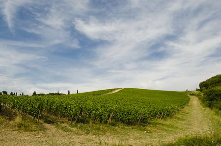tuscany landscape scenes