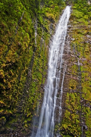 end of the trail: The Waimoku falls are at the end of the popular Waimoku Falls Trail on Maui Hawaii and about 120 meter tall.