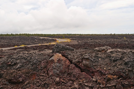 Solidified Cracked Lava Flow in Volcano, volcanic landscape when driving Chain of craters road in Big Island of Hawaii