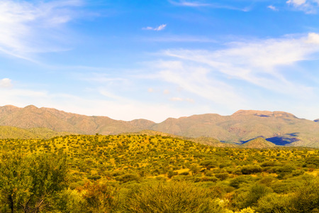 rural area: Rural area landscape near Windhoek in Namibia.