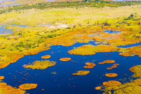 okavango delta: Aerial view at picturesque view of Okavango Delta, Botswana.
