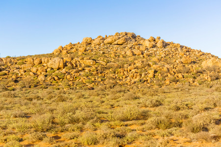 northern cape: Desert type landscape on the road between Kliprand and Nieuwoudtville, Northern Cape in South Africa