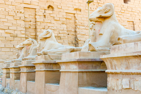 thebes: Ram statues of the Karnak temple, Luxor, Egypt (Ancient Thebes with its Necropolis).  Stock Photo