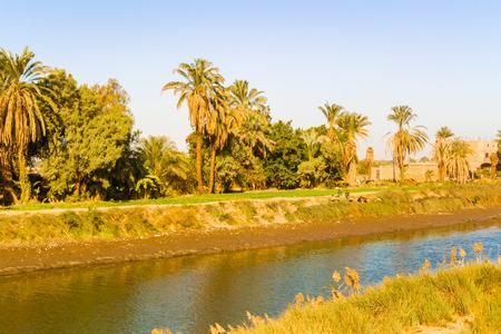 the nile: Nile canal near Luxor in Egypt.