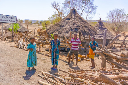 oudoors: Derek Abay, Ethiopia - February 6, 2015: Group of children in front of the houses in Derek Abay small village in Ethiopia.