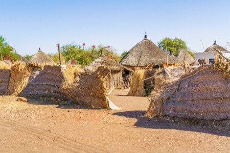 dwelling: View from the road at the houses in Rashid,  Sudan.