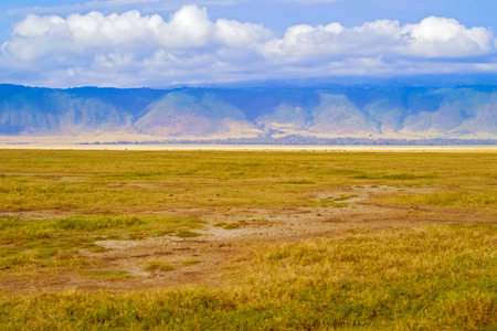 east africa: Landscape view at the Ngorongoro crater plain in Tanzania in East Africa. Stock Photo