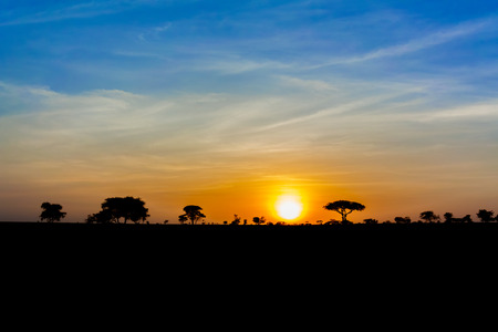 Scenic sunset over savannah landscape in Tanzania in East Africa