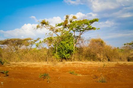 Rural landscape in Ethiopia Imagens - 45105533