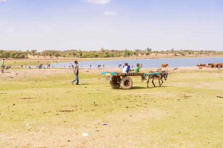 shore line: Lake Koka, Ethiopia - February 20, 2015: Donkey carrying cart with boys at Lake Koka in Ethiopia. View at the Lake Koka shore line in Ethiopia.