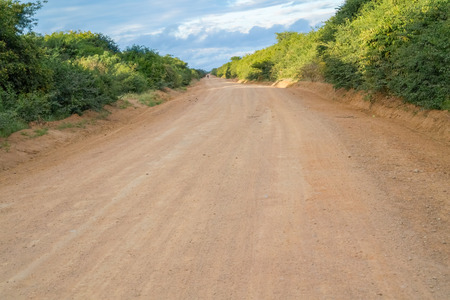 the game reserve: The road through Muhesi Game Reserve in Tanzania.