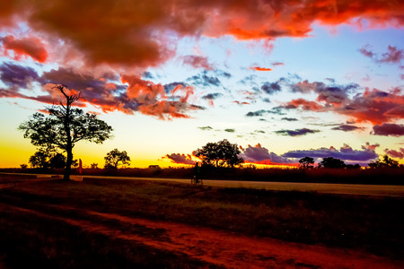 zambia: Picturesque sunset  landscape over wilderness in Zambia
