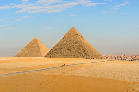 Landscape view at the  Pyramids of Giza and Cairo at the background Reklamní fotografie