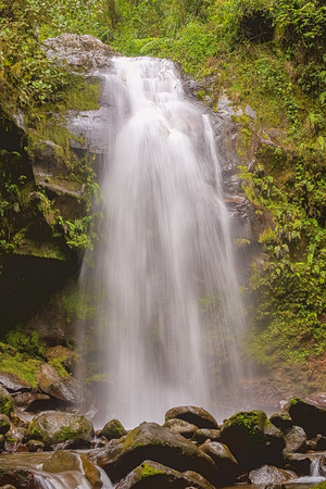 The Lost Waterfalls are located on the slopes of Volcan Baru near Boquete in Panama. There are three waterfalls on this hike. The views and waterfalls are breathtaking. It is fall number three.