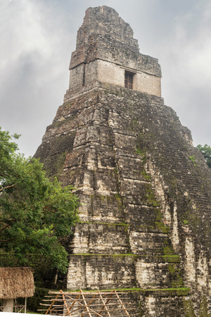 Tikal is the ruins of an ancient city found in a rainforest in Guatemala. Tikal was the capital of a conquest state that became one of the most powerful kingdoms of the ancient Maya. Though monumental architecture at the site dates back as far as the 4th