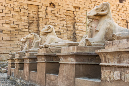 Ram statues of the Karnak temple, Luxor, Egypt (Ancient Thebes with its Necropolis).