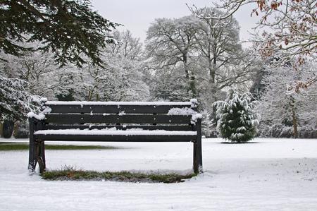 Winter Snow Фото со стока