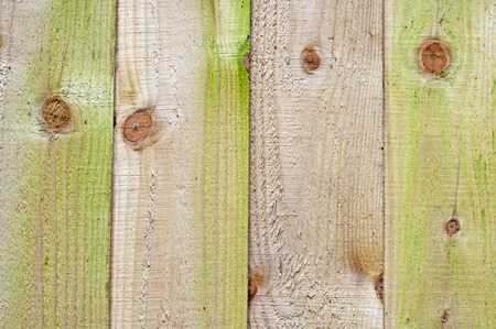 Wooden Panel Fence Фото со стока