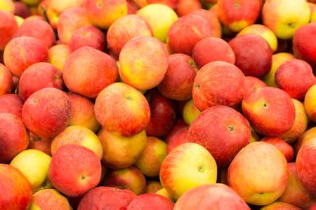 Ripe village apples