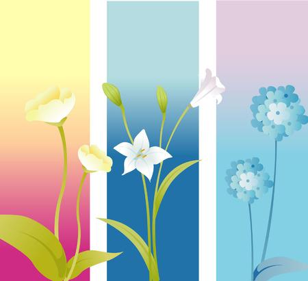 con flores de colores pasteles suaves de fondo Foto de archivo - 2569902