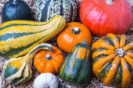Pumpkins mix on hay background Stock Photo