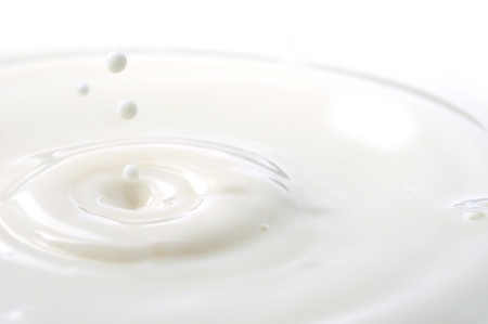 Macro shot of splashing milk droplets.  photo