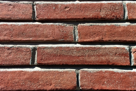 Brick wall background under sunlight photo