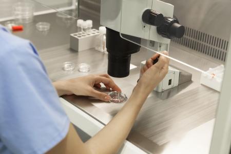 Scientist using a microscope in a laboratory under studio lights Reklamní fotografie