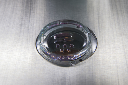 labratory: Petri dish with fertilized eggs in a labratory