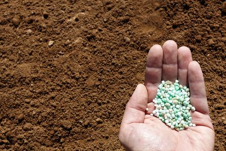 Hand holding chemical fertilizer on soil background.
